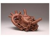 heart-resized1
