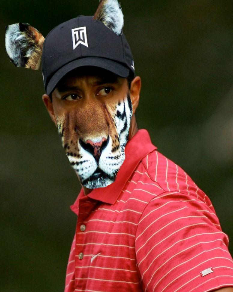 max tiger tiger woods